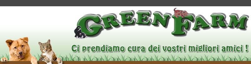 Home Pensione Green Farm | Castelraimondo